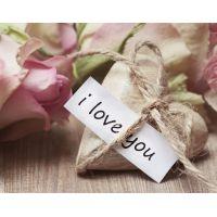 Valentýn, den sv. Valentýna, svátek zamilovaných...